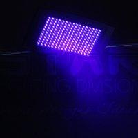 Led Strobo UV